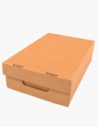caja_de_carton_ref_22F
