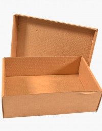 caja_de_carton_ref_22F_1